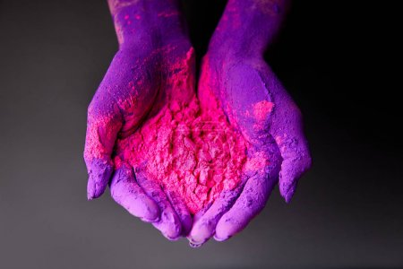 cropped view of hands with purple and pink holi powder, isolated on grey