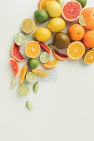 Sour citrus fruits isolated on white background