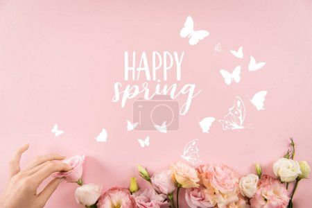 Top view of hand arranging beautiful tender flowers with HAPPY SPRING sign and butterflies isolated on pink background