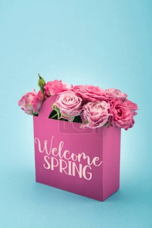 Close-up view of beautiful blooming pink roses in decorative paper bag with WELCOME SPRING sign isolated on blue
