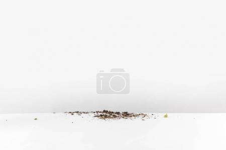 Photo pour Vue rapprochée de la terre noire renversée sur blanc - image libre de droit