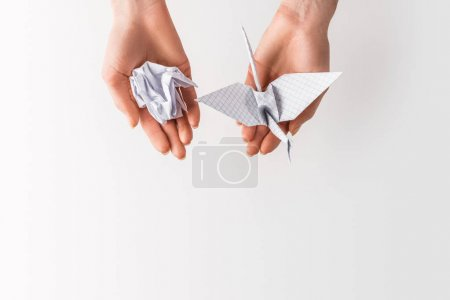 cropped shot of woman holding ball and bird made of paper in hands isolated on grey, environment and recycling concept