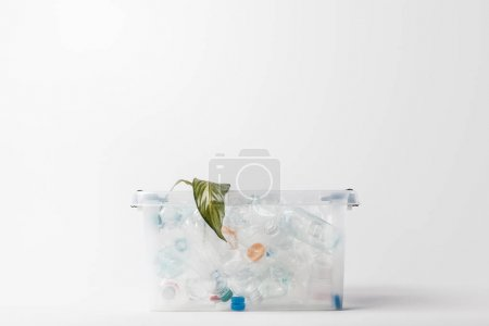 close up view of container with plastic bottles and green leaf isolated on grey, recycling concept