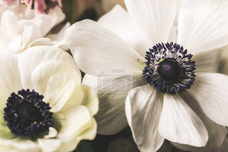 Photo for Close up view of beautiful bridal bouquet - Royalty Free Image