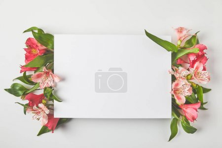 top view of blank card and beautiful pink flowers on grey
