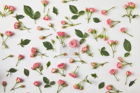 top view of background from beautiful pink roses and green leaves on grey