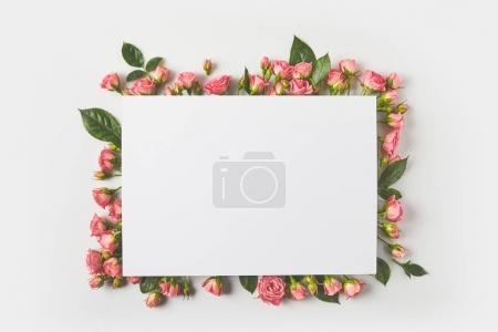 Photo for Blank card and beautiful pink roses with green leaves on grey - Royalty Free Image