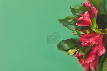 close-up shot of bunch of beautiful Alstroemeria flowers on green, mothers day concept