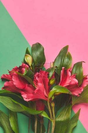 Photo pour Vue de dessus du bouquet de fleurs Alstroemeria rose et vert concept surface, journée des mères - image libre de droit