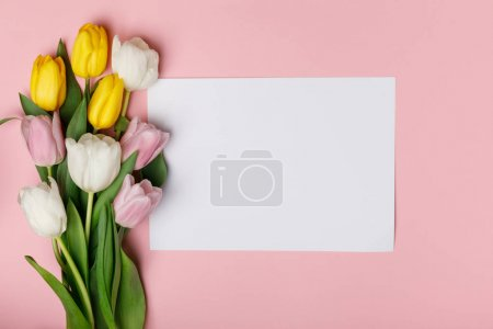 Bouquet of spring tulips with blank paper isolated on pink