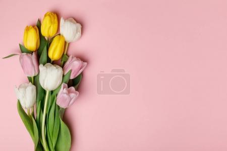 Photo pour Fleurs printanières tulipes isolées sur fond rose - image libre de droit
