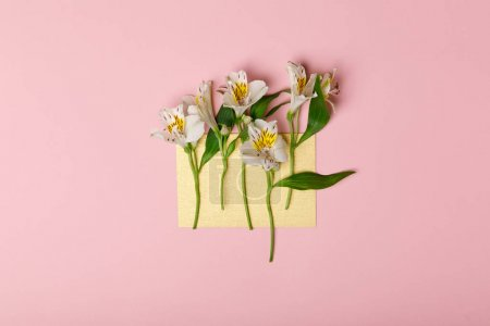 Alstromeria flowers on blank paper isolated on pink