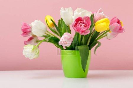Tender blooming tulips in vase on pink background