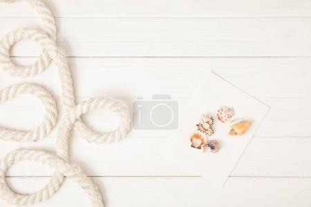 top view of white nautical rope and seashells on empty paper on wooden surface