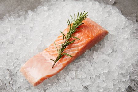 slice of red fish with rosemary branch on crushed ice