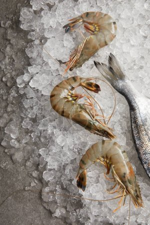 top view of raw fish and prawns on crushed ice