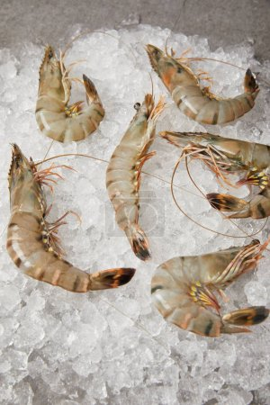 top view of raw shrimps on crushed ice