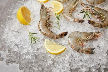 close-up shot of raw shrimps with rosemary and lemon slices on crushed ice
