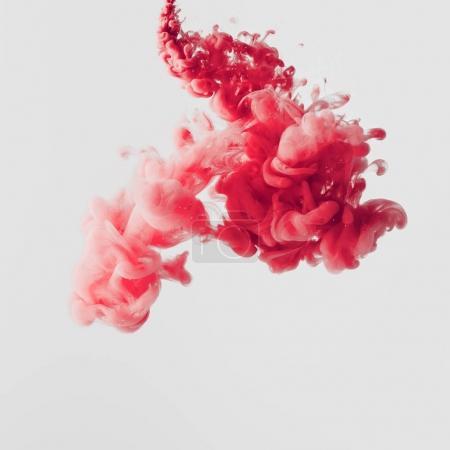 Photo pour Vue rapprochée de éclaboussures de peinture rouge vif dans l'eau isolée sur gris - image libre de droit