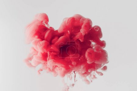 Close up shot of bright red ink  splash in water isolated on gray
