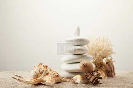 close up view of arranged white sea stones and seashells on sand on grey background