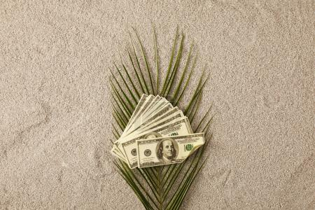 top view of green palm leaf and dollar banknotes on sand, vacation concept