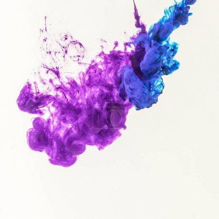 Photo pour Éclaboussures fumées de peinture bleue et violette dans l'eau, isolées sur du blanc - image libre de droit