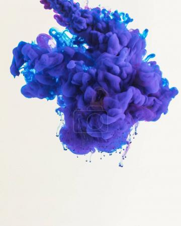 Photo for Creative design with flowing blue and purple smoky ink, isolated on white - Royalty Free Image