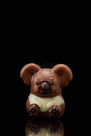 closeup shot of koala shaped chocolate on black background