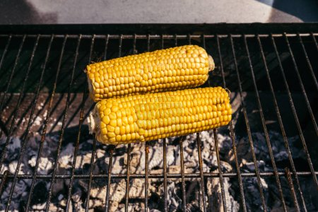 Corn cobs grilled for outdoors barbecue