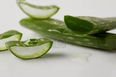 closeup shot of aloe vera leaves slices with juice