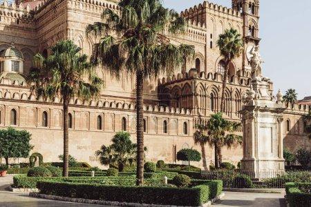 Photo pour Palerme, Italie - 3 octobre 2019 : palmiers dans le parc villa bonanno près de la cathédrale de palerme - image libre de droit