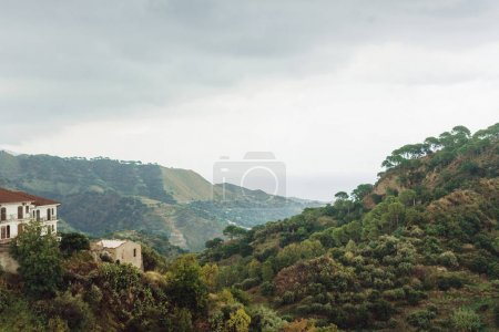 Photo for Green trees on hills near small houses in savoca, italy - Royalty Free Image
