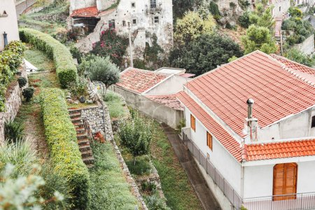 Photo for Selective focus of small houses on hills near plants and trees in sicily - Royalty Free Image