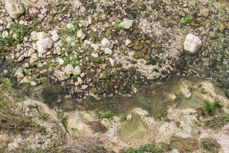 Photo pour Vue de dessus des pierres près de la mousse verte et des plantes à l'extérieur - image libre de droit