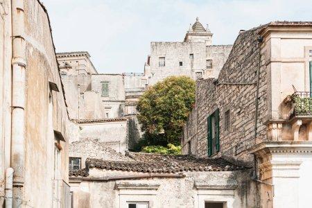 Photo pour Arbre vert près de vieux bâtiments à modica, Italie - image libre de droit