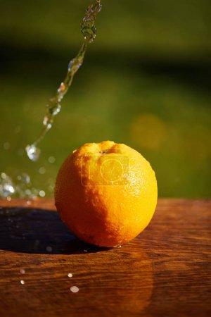 Photo pour Focalisation sélective de l'orange entier et humide sur la surface en bois - image libre de droit