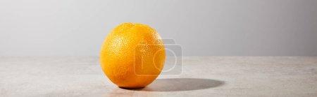 Photo pour Photo panoramique d'orange entier et mûr sur fond gris - image libre de droit