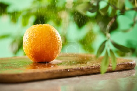 Photo for Selective focus of whole orange with drops on wooden cutting board - Royalty Free Image