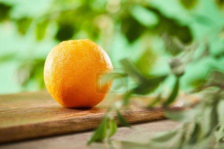 Photo pour Focalisation sélective de l'orange entier sur les planches à découper en bois - image libre de droit