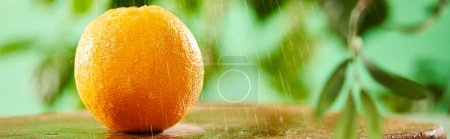 selective focus of whole orange with drops on wooden cutting board