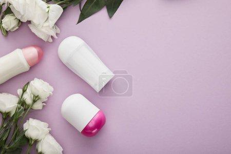 Photo pour Top vue des bouteilles de déodorant sur fond violet avec des roses blanches - image libre de droit