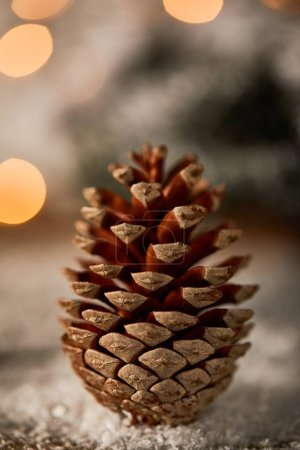 Foto de Close up of pine cone on snow with christmas lights bokeh - Imagen libre de derechos
