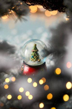 Photo pour Petite boule de neige avec sapin de Noël debout sur bleu avec branches d'épinette, neige et lumières floues - image libre de droit