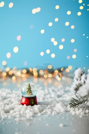 Photo for Little christmas tree in snowball standing on blue with spruce branches in snow and blurred lights - Royalty Free Image
