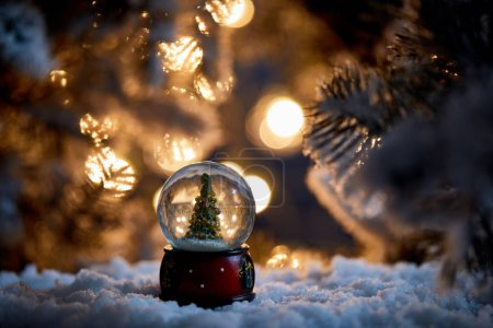 Photo for Christmas tree in snowball standing in snow with spruce branches and lights bokeh at night - Royalty Free Image