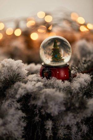Photo pour Petite boule de neige avec arbre de Noël debout sur des branches d'épinette dans la neige avec lumières bokeh - image libre de droit