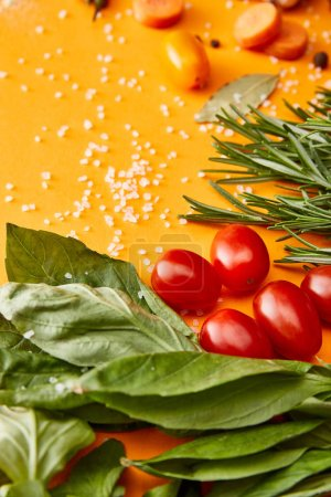 Photo for Fresh herbs with vegetables and salt on orange background - Royalty Free Image