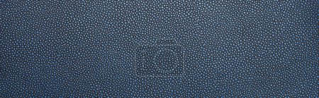 Photo for Top view of empty dotted blue paper texture, panoramic shot - Royalty Free Image