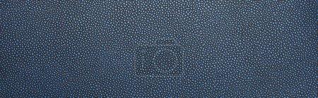 Foto de Vista superior de la textura de papel azul punteado vacío, disparo panorámico. - Imagen libre de derechos